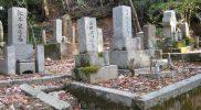 Yae and Jseph Hardy Neesima Graveyard