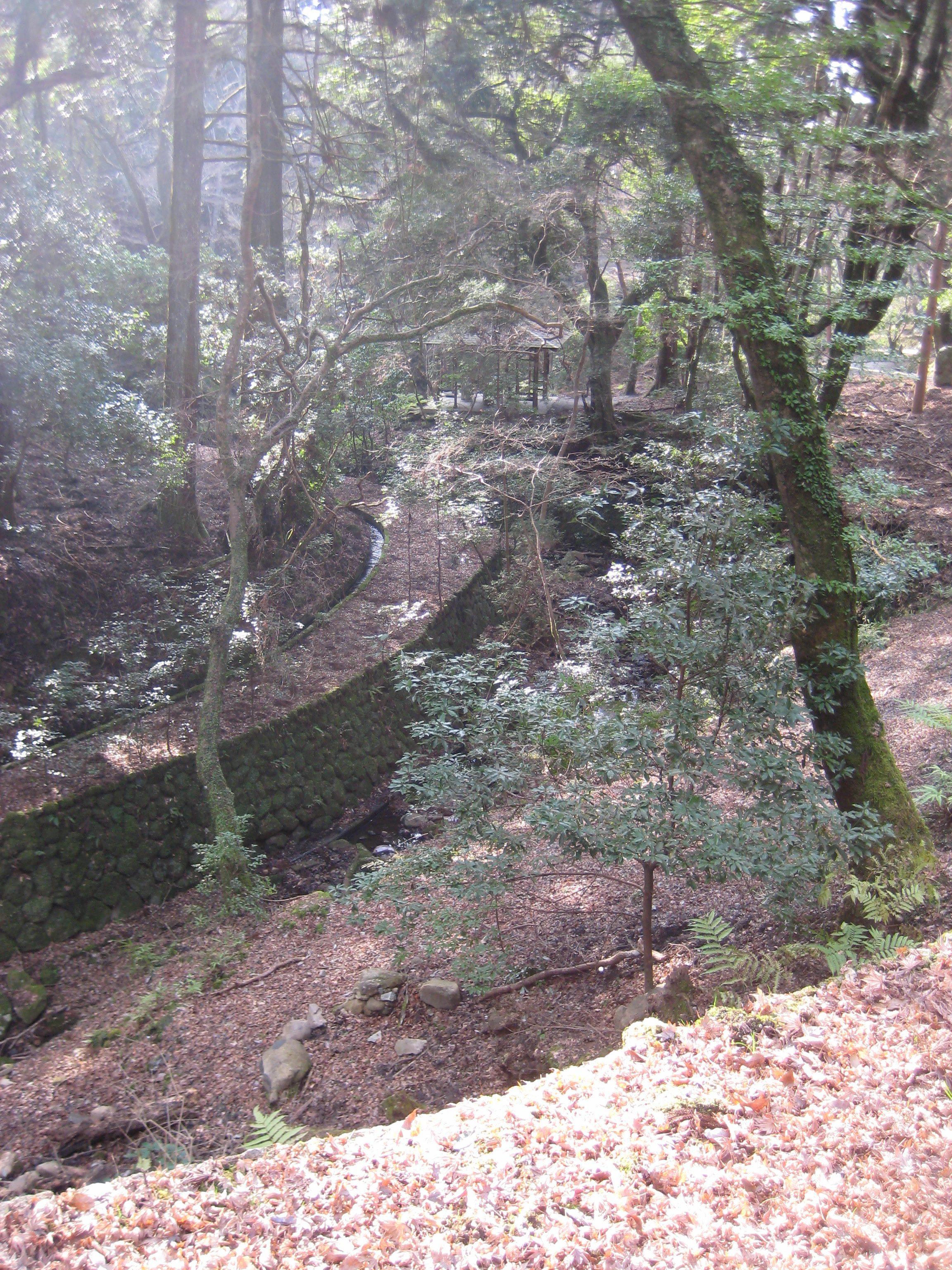 Mount Wakakusa Hike