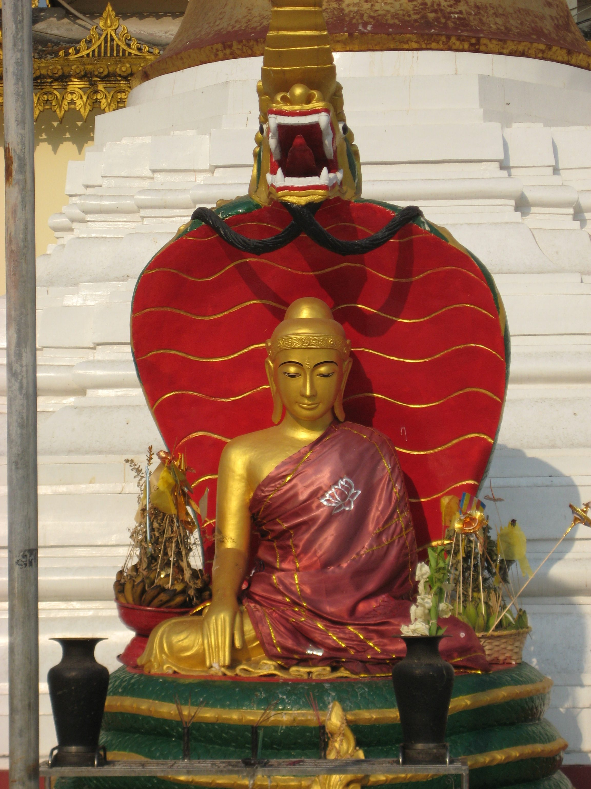 Buddha & Dragon