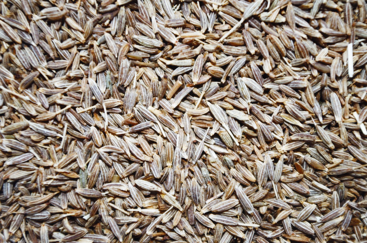 <strong>Cumin</strong> <hr> Use seeds and dry roast in oil or ghee before cooking. Or use ground/powder. Popular in Indian cuisine and smells strong, but it's great for meat and doesn't taste as strong when cooked.