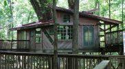 Arboretum Treehouse