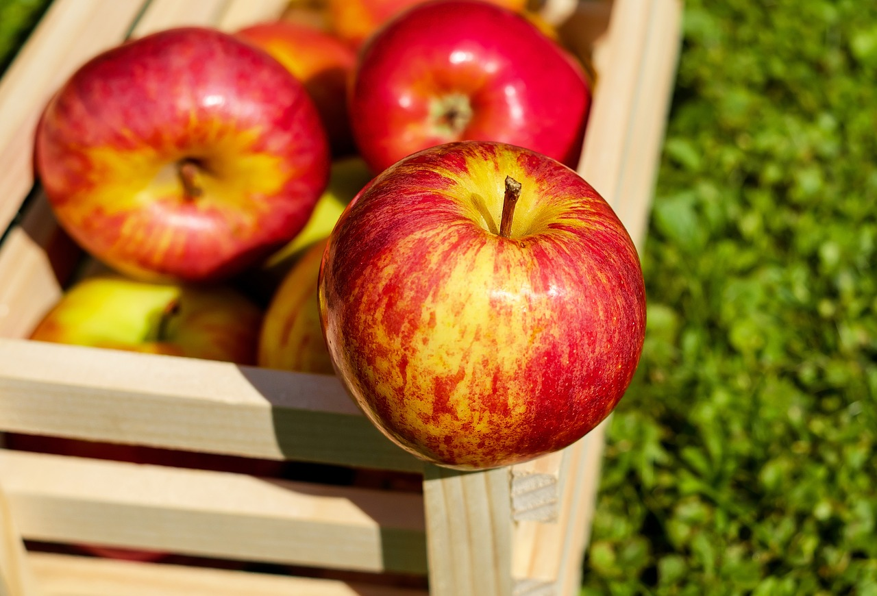 <strong>Apples</strong> <hr> Granny Smith, Braeburn, Gala, McIntosh, Honeycrisp. The skin, especially if not organic, may cause digestion issues. Could also be high fiber content in the skin.