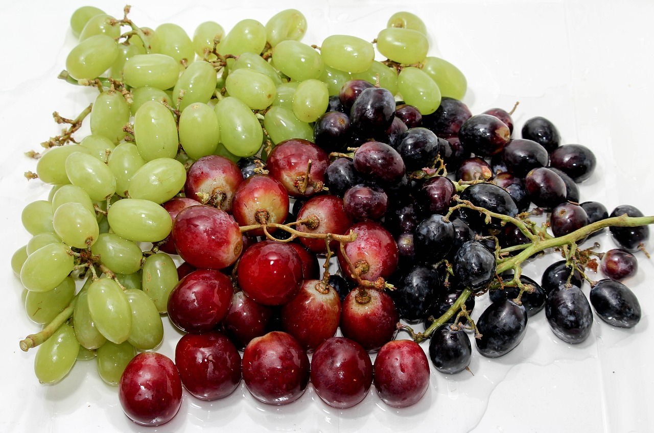 <strong>Grapes</strong> <hr> Red, black.