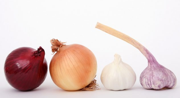 <strong>Onions</strong> <hr> Different types vary in sweetness. Cooked or raw, but cooked may be easier to digest for some.