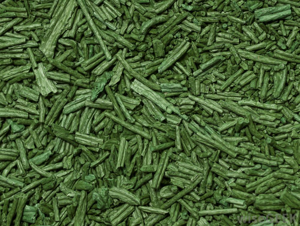 <strong>Spirulina</strong> <hr> Can be ingested as powder or found in salad mixes.